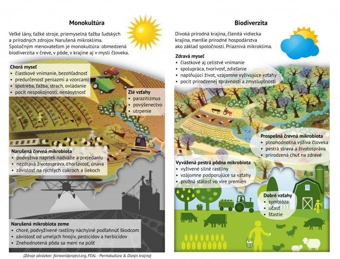 Monokultúra a biodiverzita
