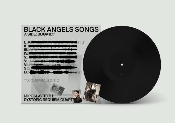 8733-abf184f-vizualy-bas-vinyl4.png